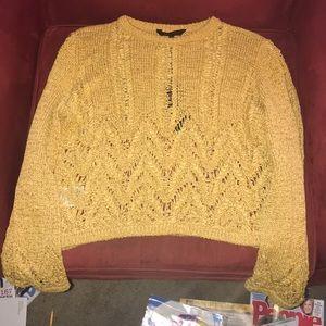 Women's BCBMAXAZRIA  sweater.